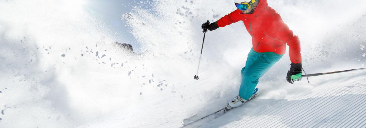 Fischer Ski Alpinski