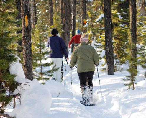 Fischer Ski Schneeschuhwanderung